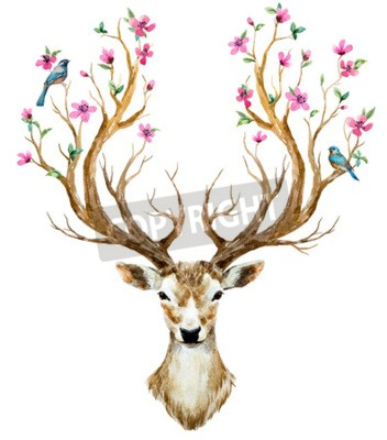 Sticker Beautiful image with nice watercolor hand drawn deer