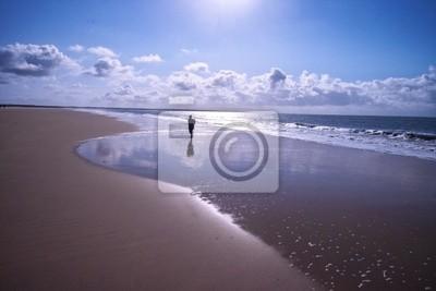 beautiful landscape beach