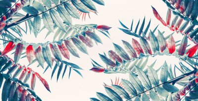 Sticker Beautiful tropical leaves background, banner