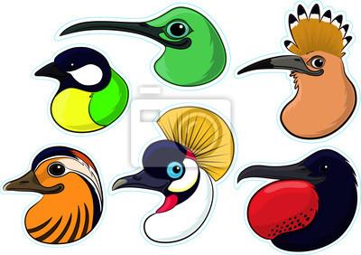 Sticker Birds 4