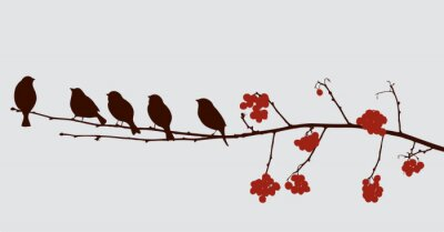 Sticker birds on the rowan branch