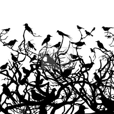 Birds over wood4
