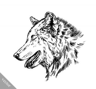 Sticker black and white engrave isolated wolf