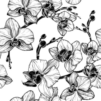 Sticker black and white seamless pattern with orchid flowers