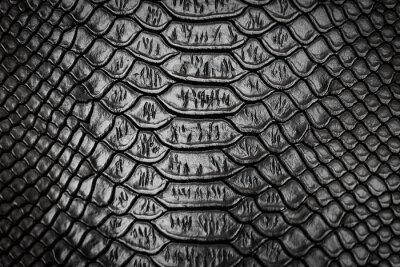 Sticker Black snake skin pattern texture