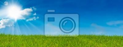 blue sky sunshine and green grass - green landscape - meadow