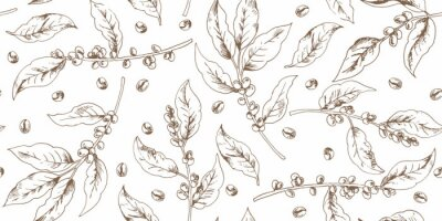Sticker Botanical seamless pattern with coffee branches and beans