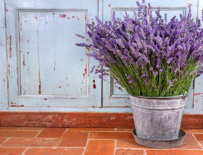 Sticker Bouquet of lavender in a rustic setting
