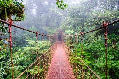 Sticker Bridge in Rainforest - Costa Rica - Monteverde