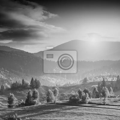 Bright valley. Monochrome