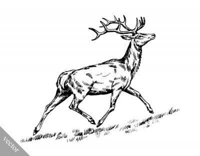 Sticker brush painting ink draw vector deer illustration
