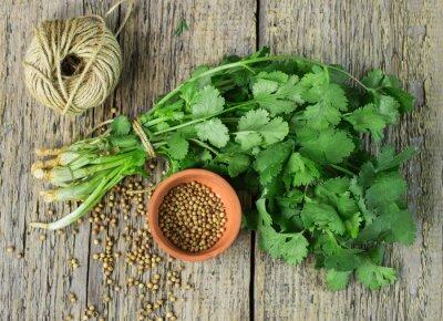 Sticker Bunch fresh cilantro and coriander seeds