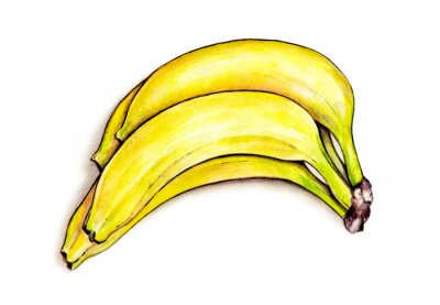 Sticker Bunch of bananas isolated on white background. Watercolor illustration