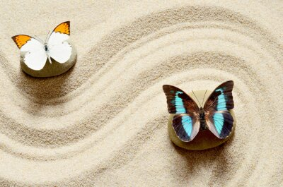 Sticker Butterfly  on the sand