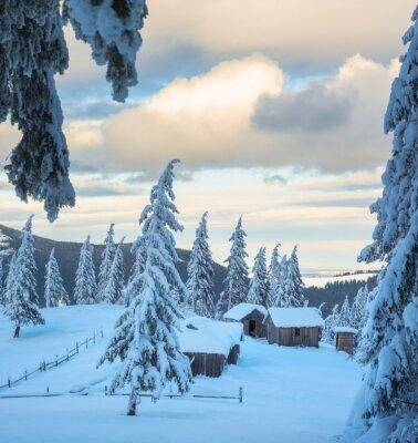 Carpathian alpine village