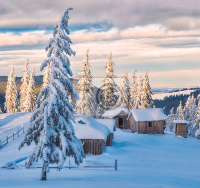 Carpathian alpine village covered with fresh snow