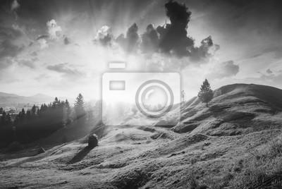 Carpathian amazing morning. Monochrome