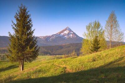 Sticker Carpathian landscape with distant mountain peak