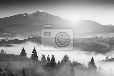 Sticker Carpathian light. Black and white