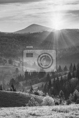 Carpathian morning. Monochrome