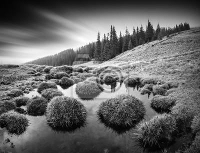 Carpathian morning. Monochrome picture