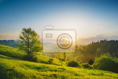 Carpathian morning valley