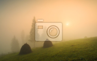 Carpathian valley covered with deep morning red fog