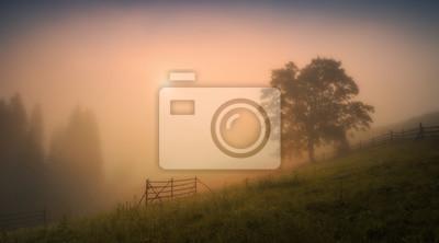 Carpathian valley in a deep morning fog