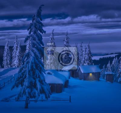 Carpathian village illuminated by the moonlight