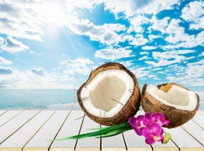 Sticker Coconut.