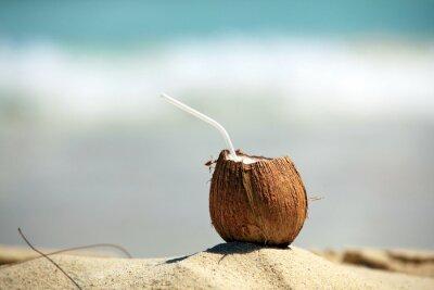 Sticker Coconut
