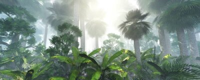 Sticker coconut jungle in the morning in the fog, forest in the haze. 3d rendering.