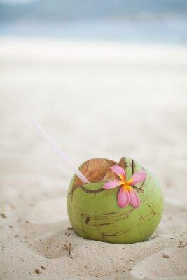 Sticker Coconut on the beach
