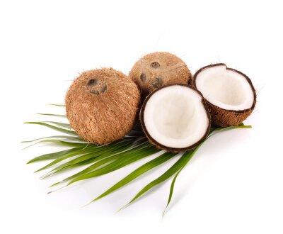 Sticker coconut on white background