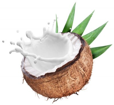 Sticker Coconut with milk splash inside.