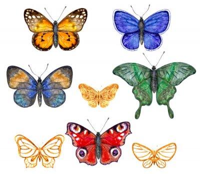 Sticker Colored butterflies set