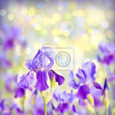 Colorful irish spring background