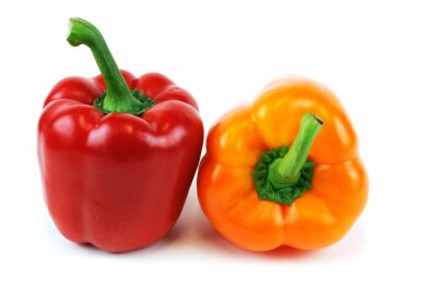 Sticker colorful peppers isolated on white background