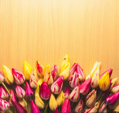 Colorful tulips on wooden background_8