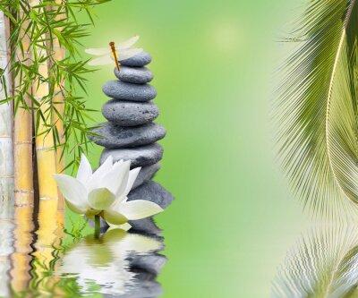 Sticker composition bambou palmier galets zen aquatique