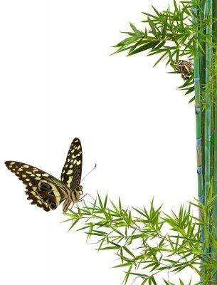 Sticker concept nature détente zen