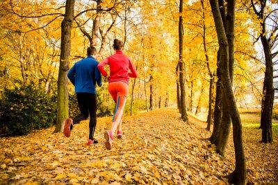 Sticker Couple jogging in autumn nature