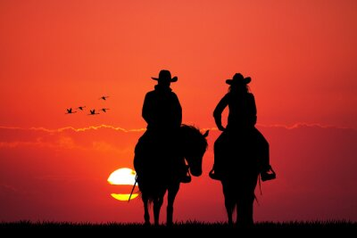 Sticker couple on horse silhouette