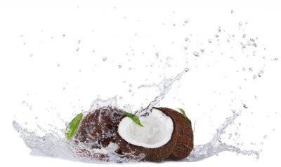 Sticker Cracked coconuts in water splash on white