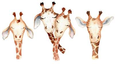 Sticker Cute giraffes couple cartoon watercolor illustration animal set