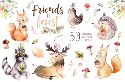 Sticker Cute watercolor bohemian baby cartoon hedgehog, squirrel and moose animal for nursary, woodland isolated forest illustration for children. Bunnies animals.