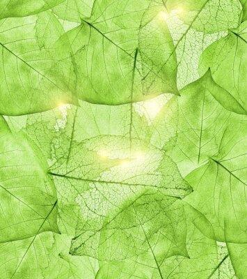 Sticker dark green leaves background