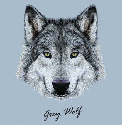 Sticker Digital vector Illustration Portrait of a Wolf.