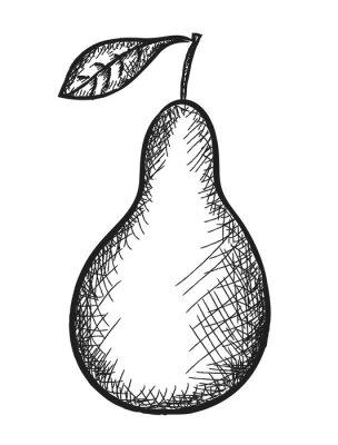 Sticker doodle pear