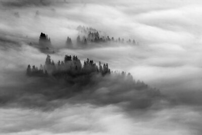 Sticker Dramatic misty valley. Black and white